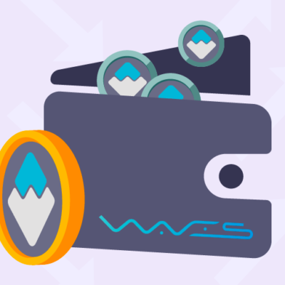 waves-wallet-review[1]
